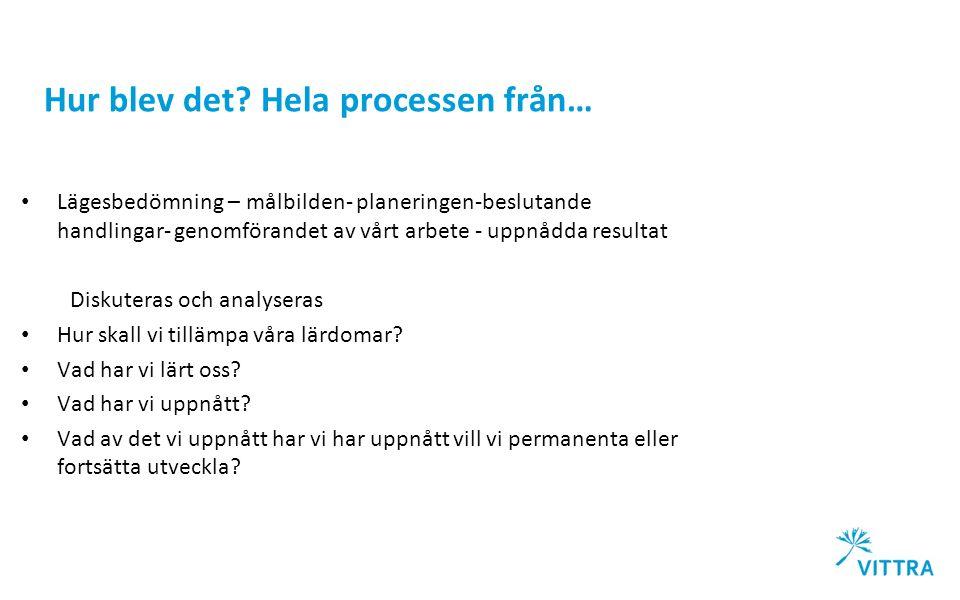 Hur blev det? Hela processen från… Lägesbedömning – målbilden- planeringen-beslutande handlingar- genomförandet av vårt arbete - uppnådda resultat Dis