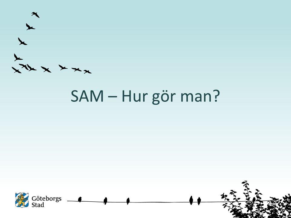SAM – Hur gör man 25