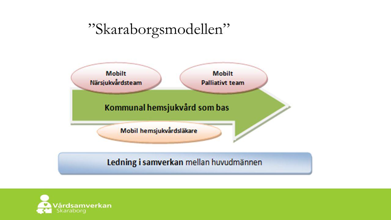 Skaraborgs Sjukhus Skaraborgsmodellen