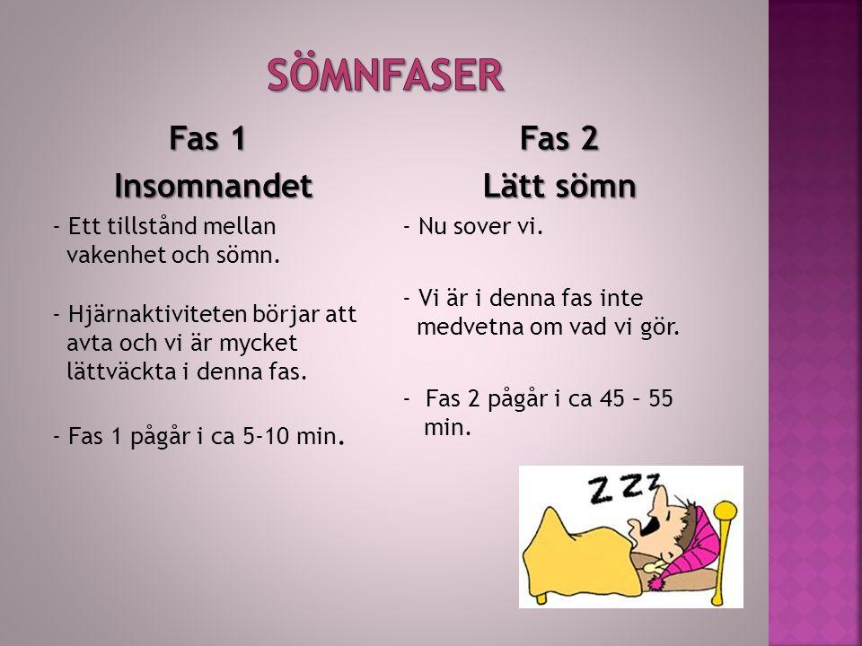 Fas 1 Insomnandet Insomnandet - Ett tillstånd mellan vakenhet och sömn.