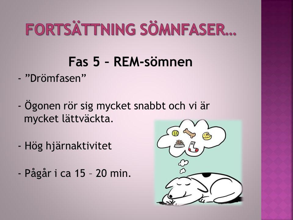 """Fas 5 – REM-sömnen - """"Drömfasen"""" - Ögonen rör sig mycket snabbt och vi är mycket lättväckta. - Hög hjärnaktivitet - Pågår i ca 15 – 20 min."""