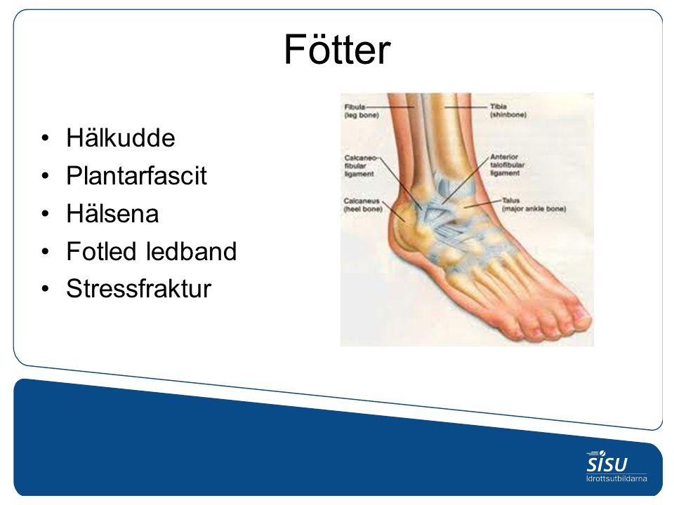 Fötter Hälkudde Plantarfascit Hälsena Fotled ledband Stressfraktur