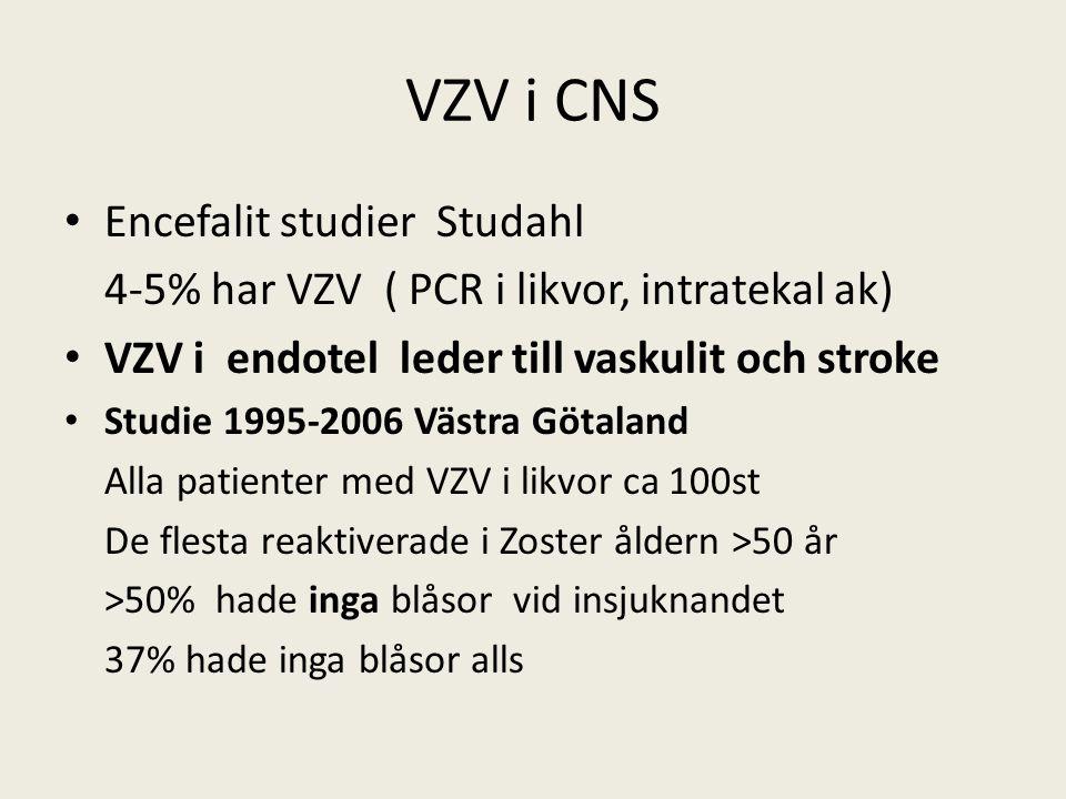 VZV i CNS Encefalit studier Studahl 4-5% har VZV ( PCR i likvor, intratekal ak) VZV i endotel leder till vaskulit och stroke Studie 1995-2006 Västra Götaland Alla patienter med VZV i likvor ca 100st De flesta reaktiverade i Zoster åldern >50 år >50% hade inga blåsor vid insjuknandet 37% hade inga blåsor alls