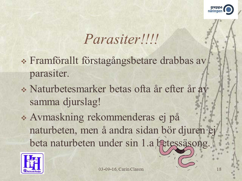03-09-16, Carin Clason18 Parasiter!!!.  Framförallt förstagångsbetare drabbas av parasiter.