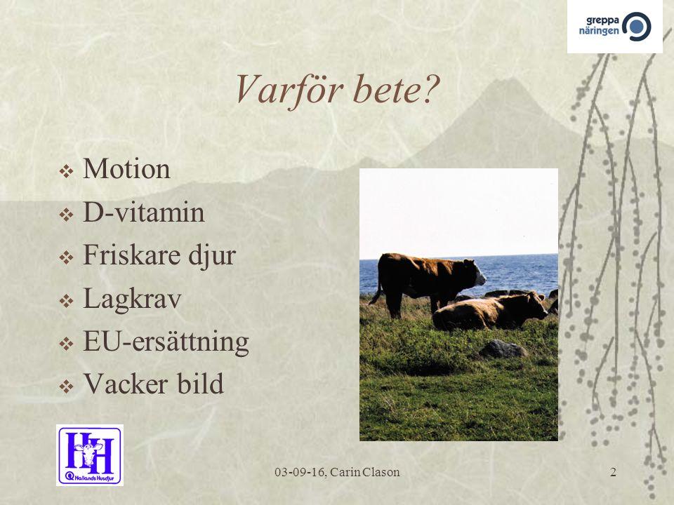 03-09-16, Carin Clason2 Varför bete.