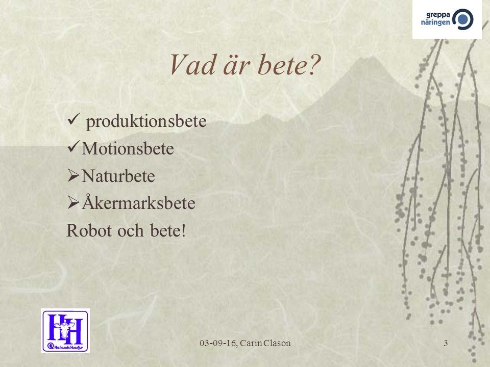03-09-16, Carin Clason3 Vad är bete.