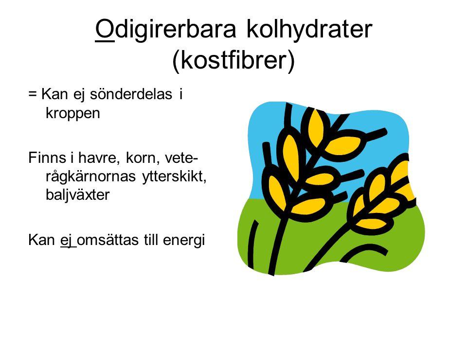 Odigirerbara kolhydrater (kostfibrer) = Kan ej sönderdelas i kroppen Finns i havre, korn, vete- rågkärnornas ytterskikt, baljväxter Kan ej omsättas till energi