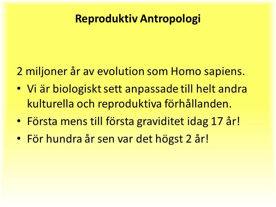 Reproduktiv Antropologi 2 miljoner år av evolution som Homo sapiens.
