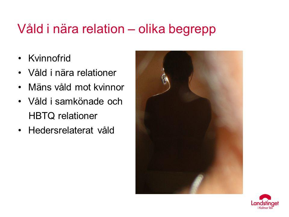 Kvinnofrid Våld i nära relationer Mäns våld mot kvinnor Våld i samkönade och HBTQ relationer Hedersrelaterat våld Våld i nära relation – olika begrepp
