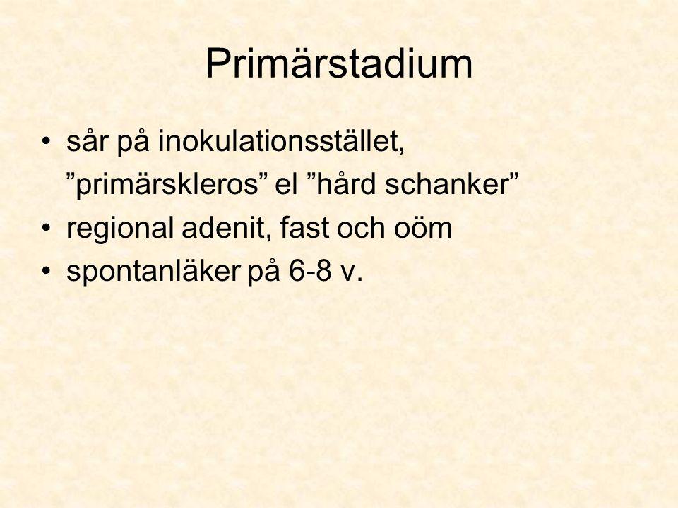 Primärstadium sår på inokulationsstället, primärskleros el hård schanker regional adenit, fast och oöm spontanläker på 6-8 v.