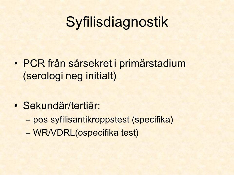 Syfilisdiagnostik PCR från sårsekret i primärstadium (serologi neg initialt) Sekundär/tertiär: –pos syfilisantikroppstest (specifika) –WR/VDRL(ospecifika test)