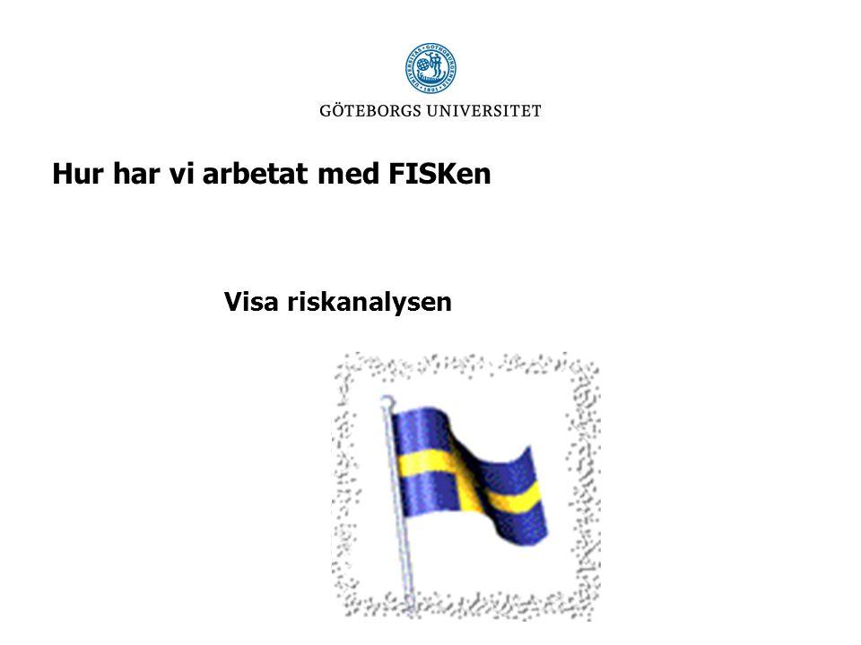 Hur har vi arbetat med FISKen Visa riskanalysen
