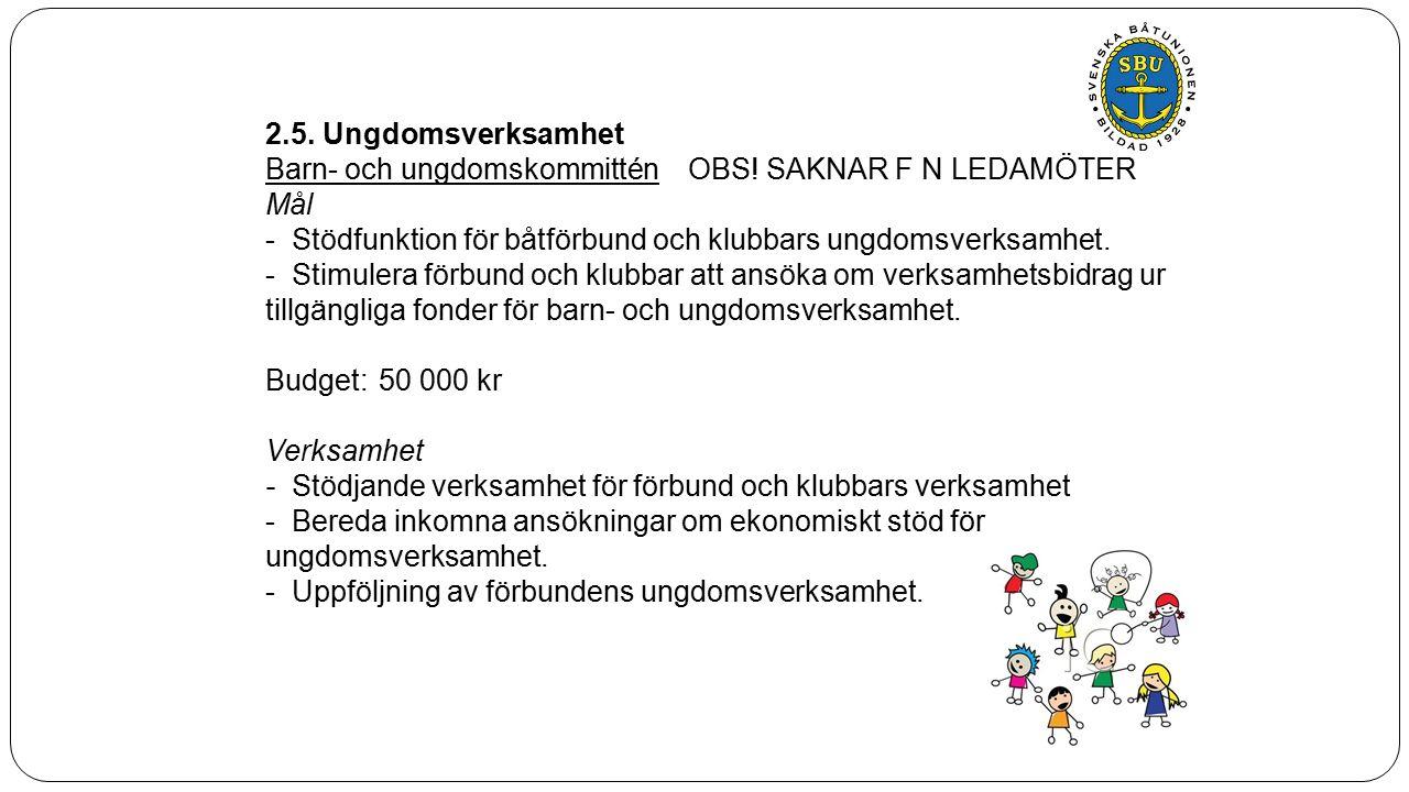 2.5. Ungdomsverksamhet Barn- och ungdomskommitténOBS.