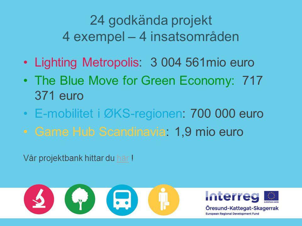 24 godkända projekt 4 exempel – 4 insatsområden Lighting Metropolis: 3 004 561mio euro The Blue Move for Green Economy: 717 371 euro E-mobilitet i ØKS-regionen: 700 000 euro Game Hub Scandinavia: 1,9 mio euro Vår projektbank hittar du här !här