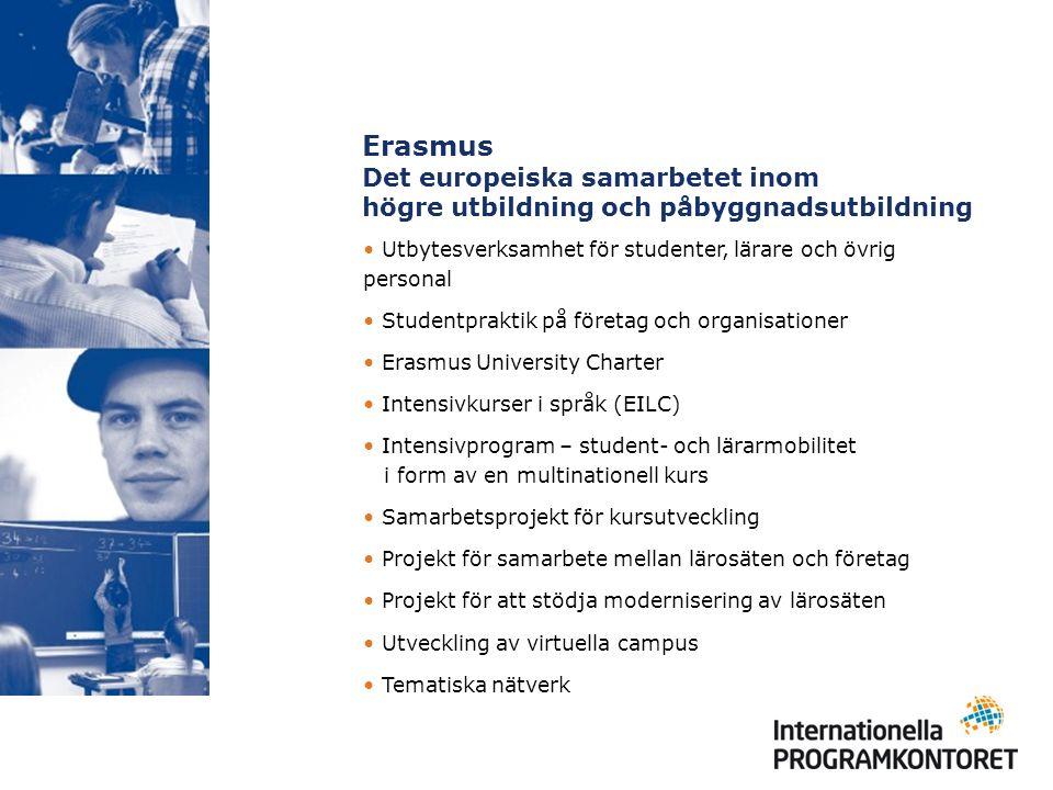 Erasmus Det europeiska samarbetet inom högre utbildning och påbyggnadsutbildning Utbytesverksamhet för studenter, lärare och övrig personal Studentpraktik på företag och organisationer Erasmus University Charter Intensivkurser i språk (EILC) Intensivprogram – student- och lärarmobilitet i form av en multinationell kurs Samarbetsprojekt för kursutveckling Projekt för samarbete mellan lärosäten och företag Projekt för att stödja modernisering av lärosäten Utveckling av virtuella campus Tematiska nätverk