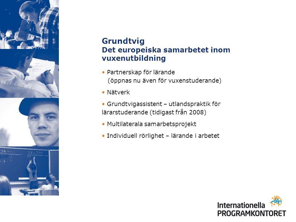 Grundtvig Det europeiska samarbetet inom vuxenutbildning Partnerskap för lärande (öppnas nu även för vuxenstuderande) Nätverk Grundtvigassistent – utlandspraktik för lärarstuderande (tidigast från 2008) Multilaterala samarbetsprojekt Individuell rörlighet – lärande i arbetet
