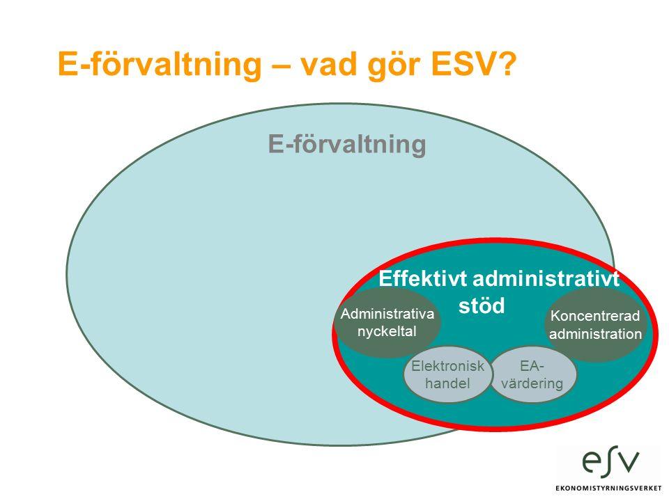 E-förvaltning – vad gör ESV.