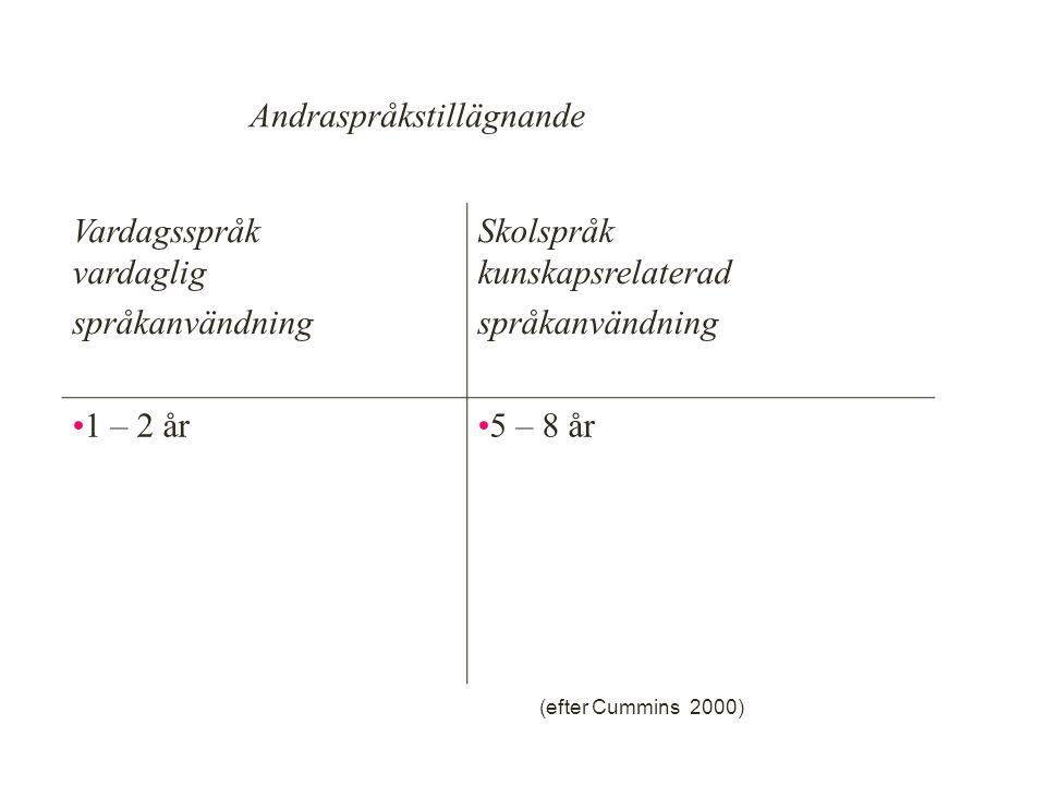 Vardagsspråk vardaglig språkanvändning Skolspråk kunskapsrelaterad språkanvändning 1 – 2 år5 – 8 år Andraspråkstillägnande (efter Cummins 2000) 23