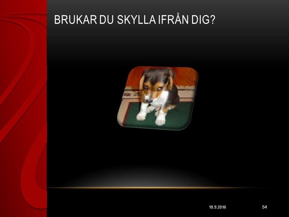 BRUKAR DU SKYLLA IFRÅN DIG? 18.9.2016 54