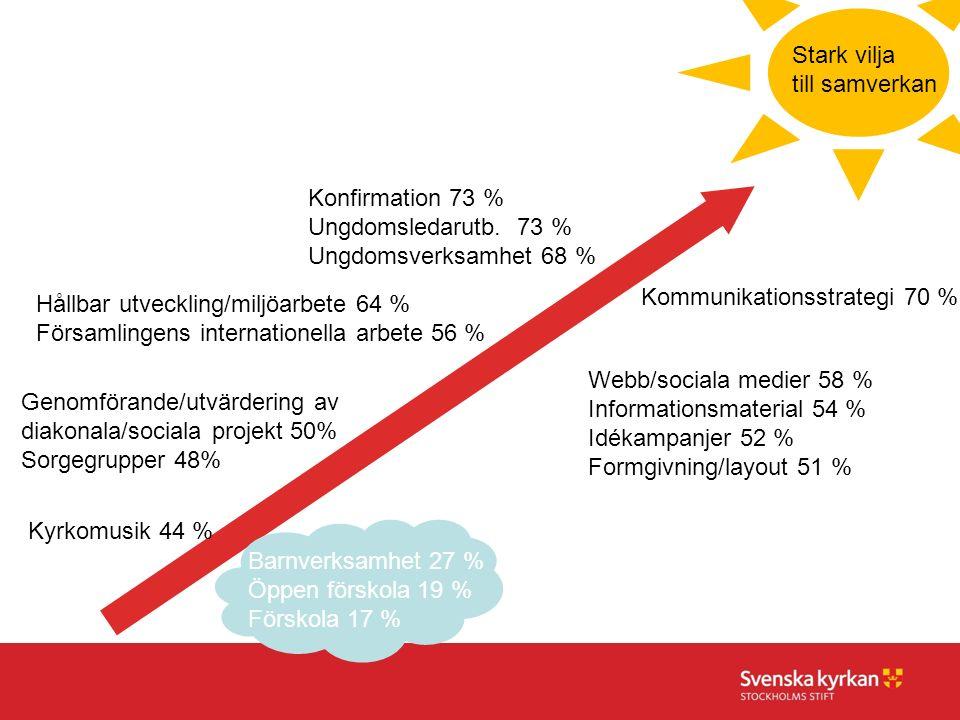 Barnverksamhet 27 % Öppen förskola 19 % Förskola 17 % Konfirmation 73 % Ungdomsledarutb. 73 % Ungdomsverksamhet 68 % Genomförande/utvärdering av diako