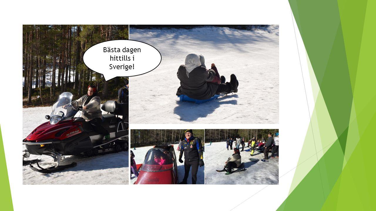 Bästa dagen hittills i Sverige!