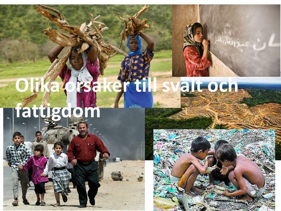 Olika orsaker till svält och fattigdom