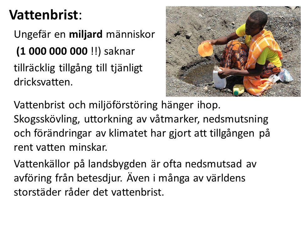 Vattenbrist: Ungefär en miljard människor (1 000 000 000 !!) saknar tillräcklig tillgång till tjänligt dricksvatten.