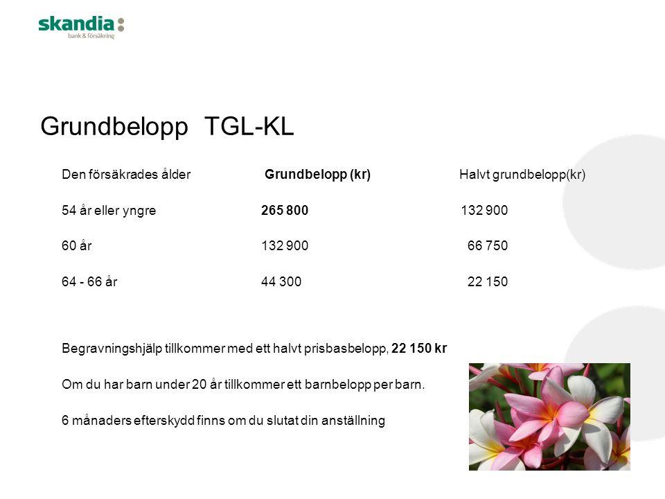 Grundbelopp TGL-KL Den försäkrades ålder Grundbelopp (kr) Halvt grundbelopp(kr) 54 år eller yngre265 800132 900 60 år132 900 66 750 64 - 66 år 44 300