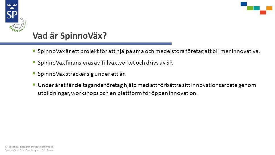 SpinnoVäx – Peter Sandberg och Erik Ronne Vad är SpinnoVäx.