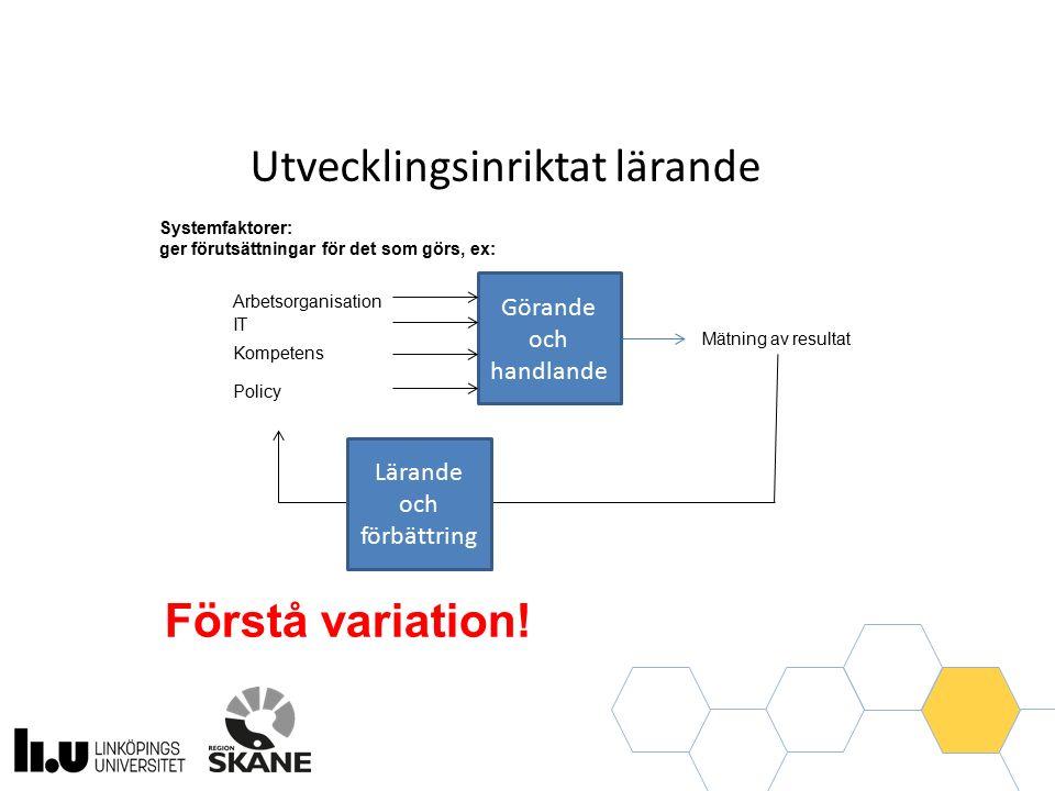 Görande och handlande Systemfaktorer: ger förutsättningar för det som görs, ex: Utvecklingsinriktat lärande Arbetsorganisation IT Policy Kompetens Lärande och förbättring Förstå variation.