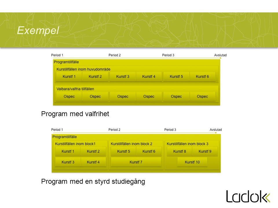 Exempel Program med en styrd studiegång Program med valfrihet