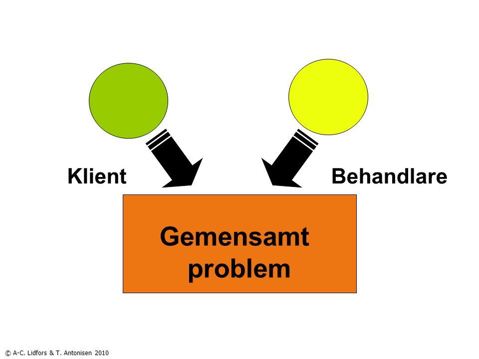 Gemensamt problem KlientBehandlare © A-C. Lidfors & T. Antonisen 2010