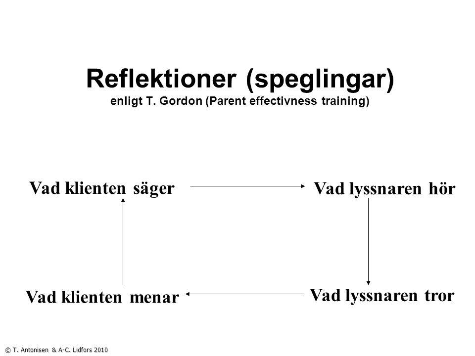 Reflektioner (speglingar) enligt T.