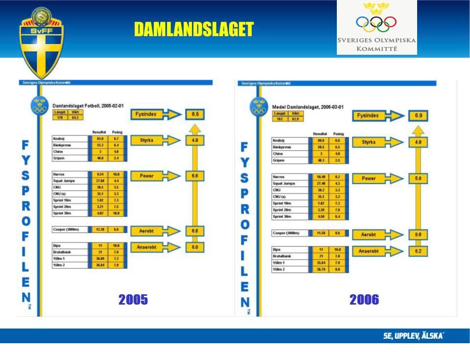 DAMLANDSLAGET 20062005