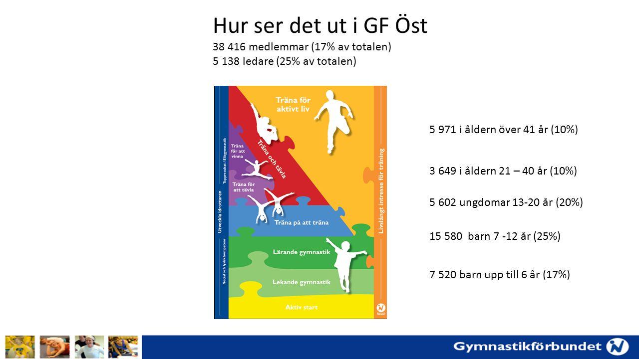 Hur ser det ut i GF Öst 38 416 medlemmar (17% av totalen) 5 138 ledare (25% av totalen) 7 520 barn upp till 6 år (17%) 15 580 barn 7 -12 år (25%) 5 602 ungdomar 13-20 år (20%) 3 649 i åldern 21 – 40 år (10%) 5 971 i åldern över 41 år (10%)