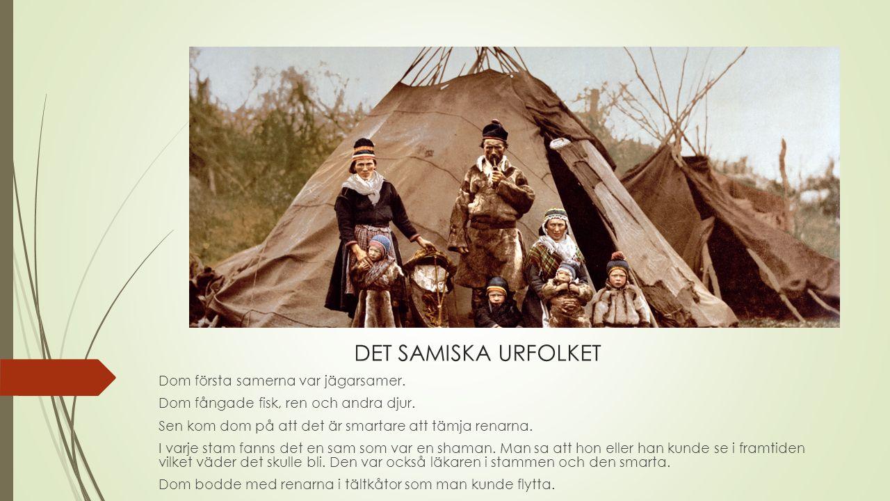 DET SAMISKA URFOLKET Dom första samerna var jägarsamer.