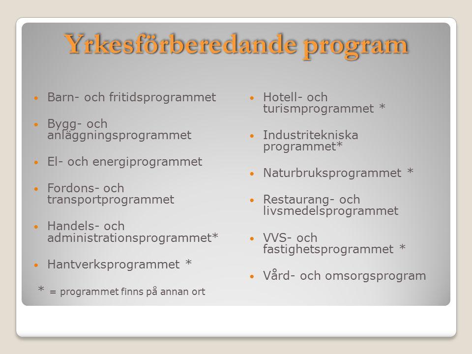 Yrkesförberedande program Barn- och fritidsprogrammet Bygg- och anläggningsprogrammet El- och energiprogrammet Fordons- och transportprogrammet Handel