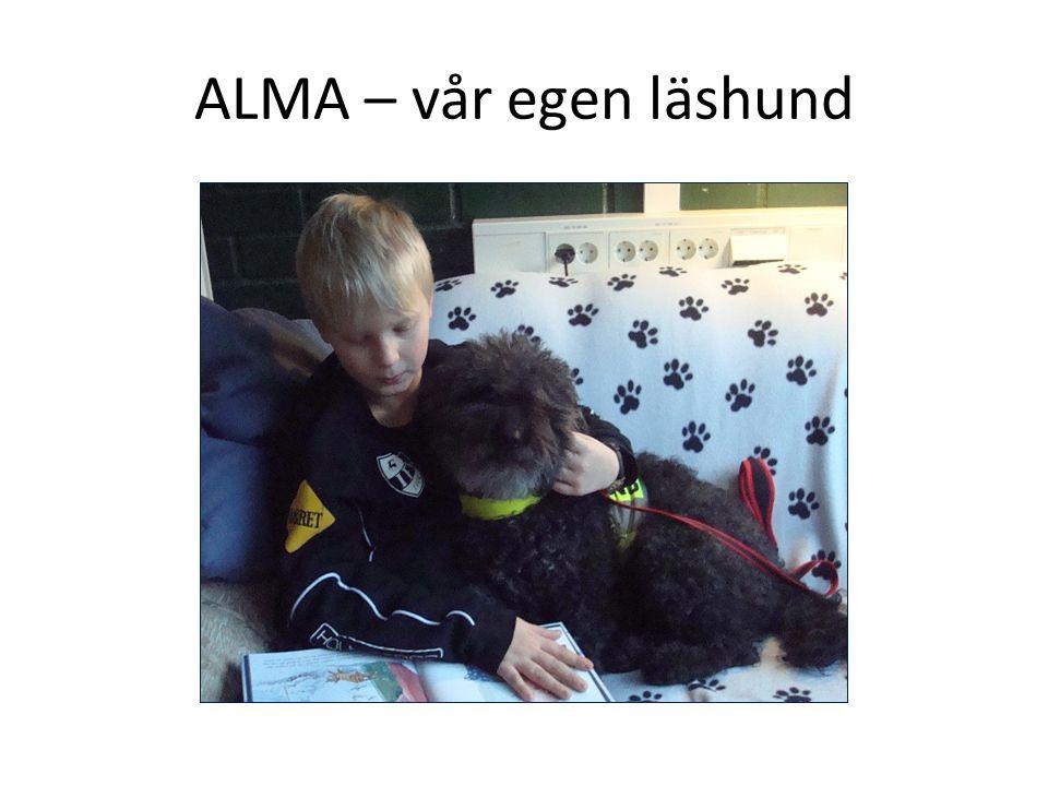 ALMA – vår egen läshund