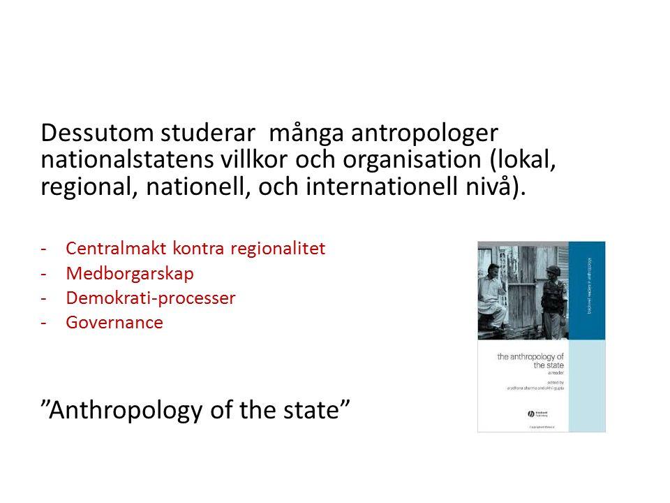 Dessutom studerar många antropologer nationalstatens villkor och organisation (lokal, regional, nationell, och internationell nivå).