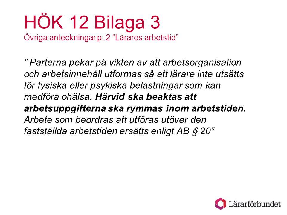 HÖK 12 Bilaga 3 Övriga anteckningar p.