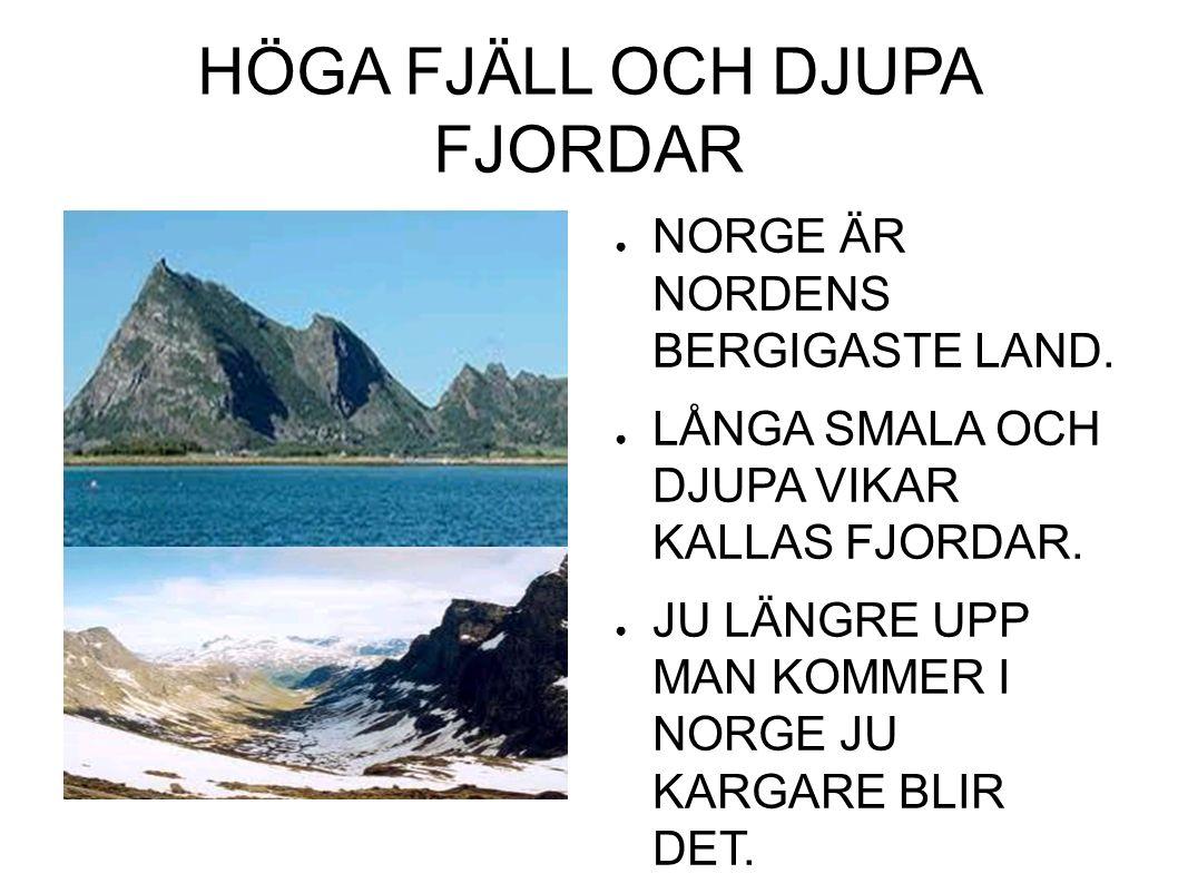 HÖGA FJÄLL OCH DJUPA FJORDAR ● NORGE ÄR NORDENS BERGIGASTE LAND.