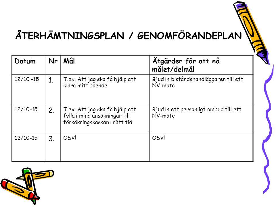 ÅTERHÄMTNINGSPLAN / GENOMFÖRANDEPLAN DatumNrMålÅtgärder för att nå målet/delmål 12/10 -15 1.