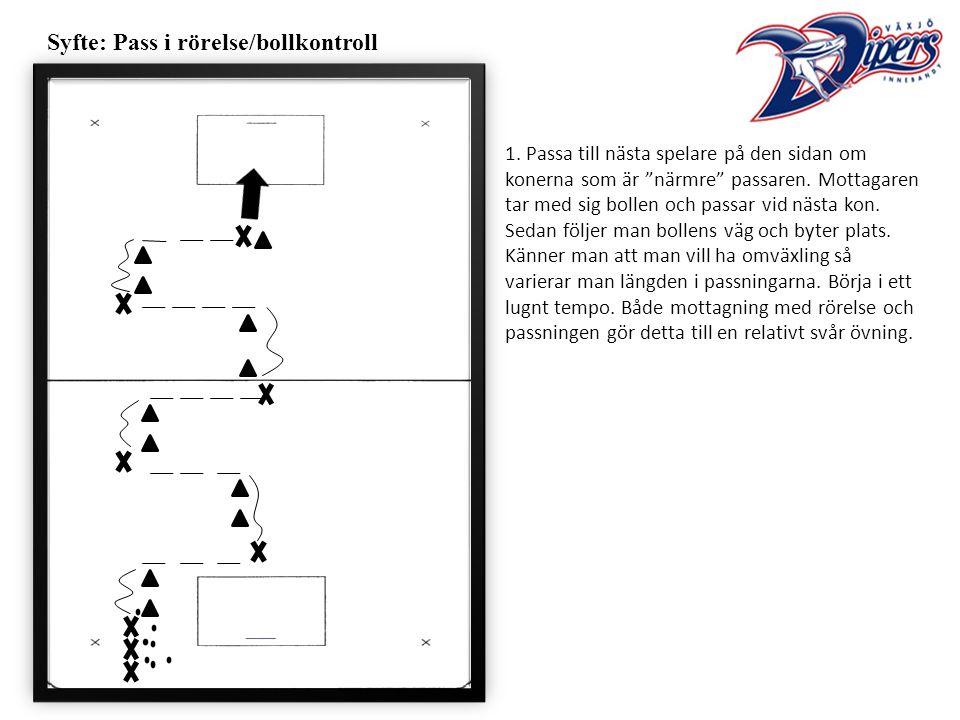 Syfte: Pass i rörelse/bollkontroll 1.
