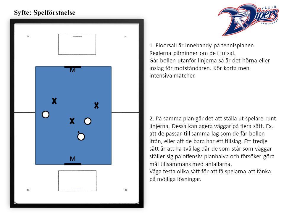 Syfte: Spelförståelse 1. Floorsall är innebandy på tennisplanen.