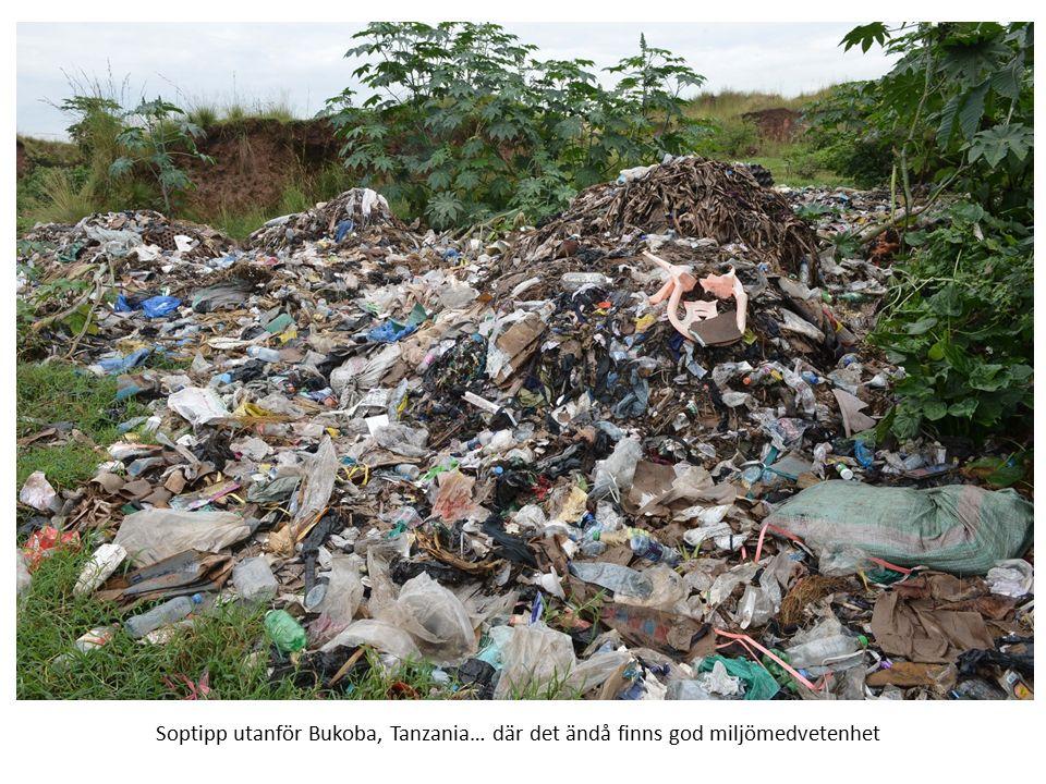 Soptipp utanför Bukoba, Tanzania… där det ändå finns god miljömedvetenhet