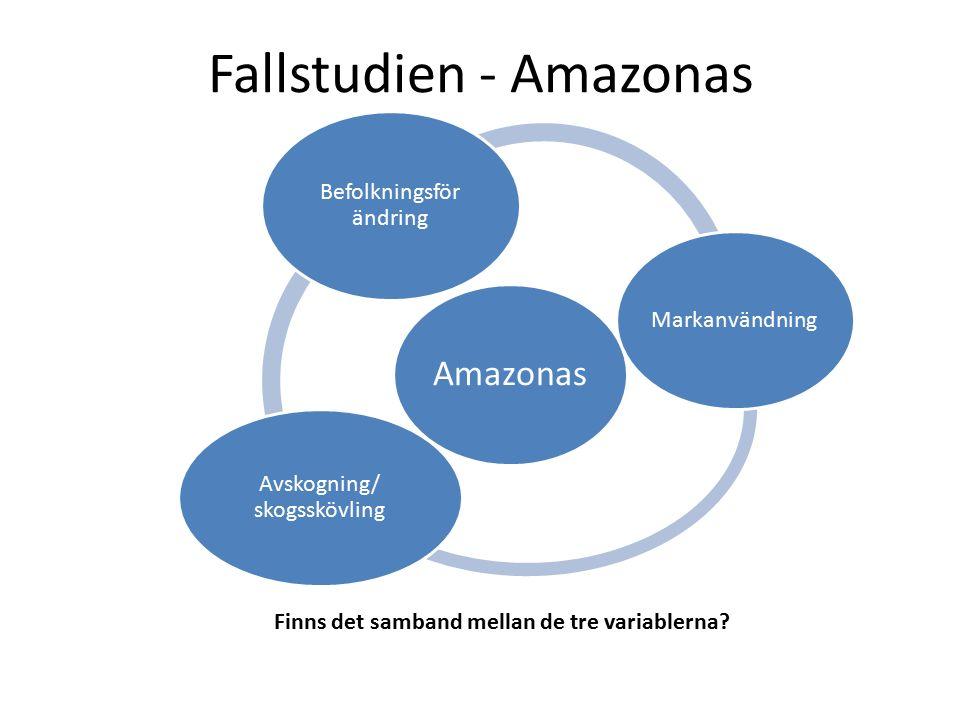 Fallstudien - Amazonas Amazonas Befolkningsför ändring Markanvändning Avskogning/ skogsskövling Finns det samband mellan de tre variablerna