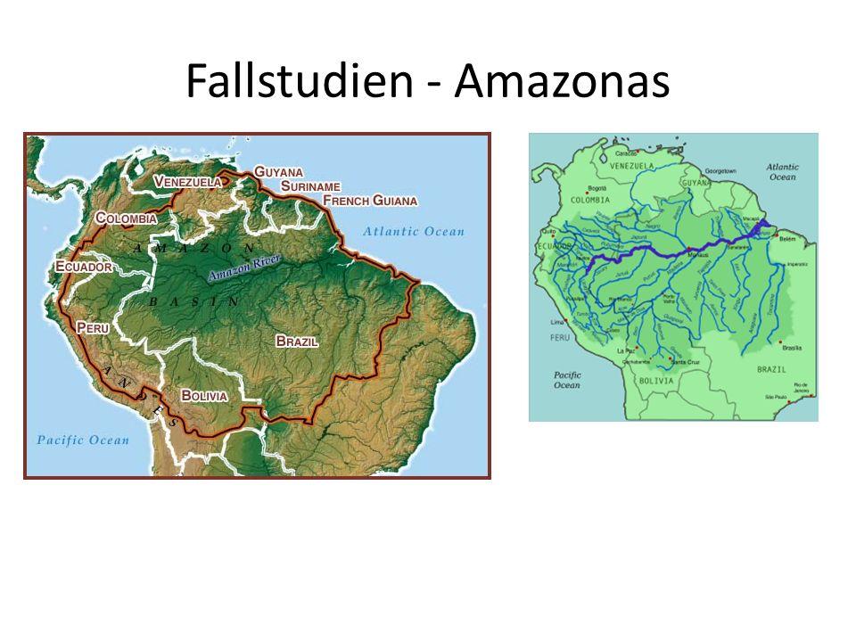 Fallstudien - Amazonas