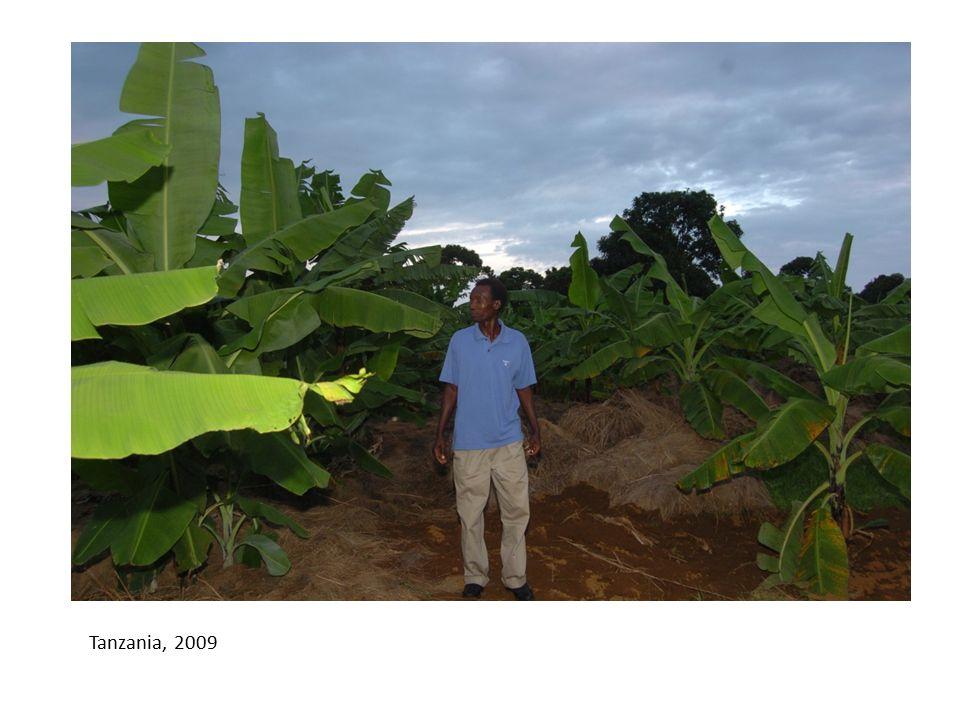 Tanzania, 2009