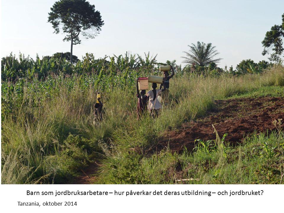 Tanzania, oktober 2014 Barn som jordbruksarbetare – hur påverkar det deras utbildning – och jordbruket?
