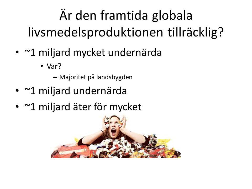Livsmedelsproduktion – geografiska utmaningar Produktionsförmågan av livsmedel är beroende av geografiska faktorer: – tillräcklig ultraviolett instrålning – lagom odlingstemperatur – vatten – god jordmån Problemet med vår planet är att merparten av jordytan inte kan uppvisa dessa fyra yttre omständigheter.